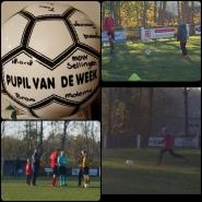 www.movv.nl